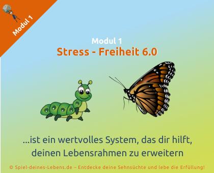SdL-Modul-1-Stress-Freiheit6.0